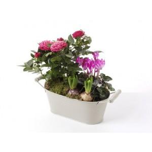 Flowering Pink Planter